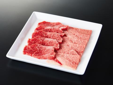 長期肥育!田中牧場産米沢牛モモ、肩 焼肉用2〜3人前(500g)