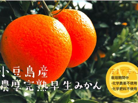 皮まで安心‼️化学農薬不使用小豆島産早生みかん5kg【予約】