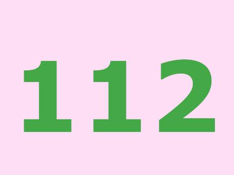 112(お客様専用)