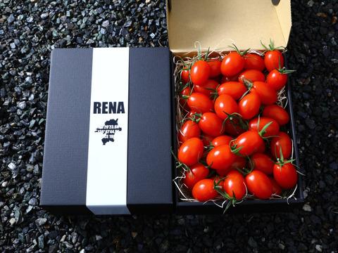 -RENA TOMATO- 1kgここでしか買えない福岡県産の激ウマとまと