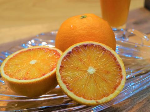 訳あり品!! 生搾りジュースにぴったりブラットオレンジ3キロ