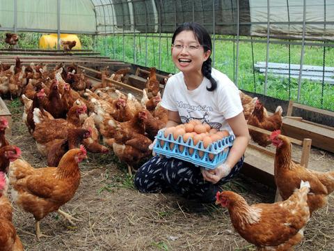 「ほんまの卵」はしあわせ卵 平飼い有精卵40個