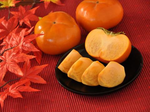 【秋の味覚】幻の柿 次郎柿!木成り完熟の逸品6個入り(1.5kg)