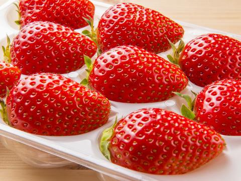 じっくり育てた甘いいちご『かおり野』1箱2トレー入