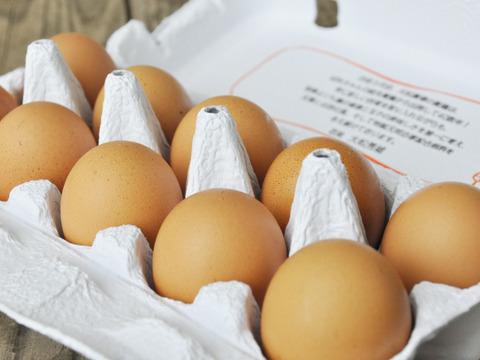 大松農場「大松のもみじ」【10個×3パック】鶏卵 自然そのままの味わい