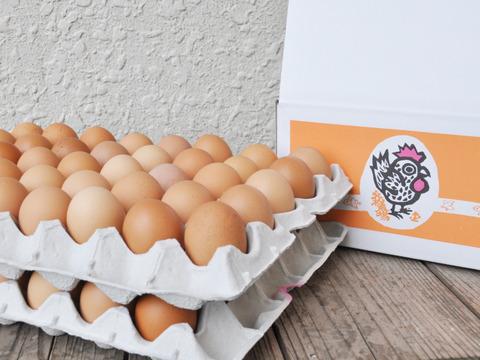 大松農場 初たまご 【90個入り】 ニワトリが大雛から成鶏になり、産み始めの「さくら」、「もみじ」の初たまご混合【90個入り】です。 サイズはS~MSサイズ混合となります。