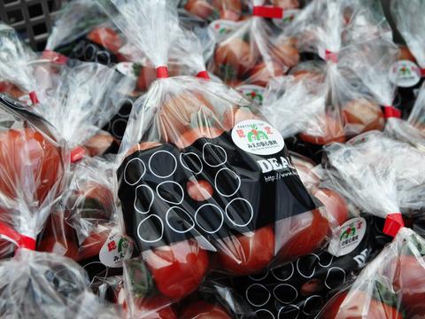 高糖度こだわりトマト詰め合わせ(お試し1.8-2.2kg)