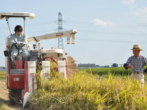 <SALE>農業歴60年越えのベテランが作ったコシヒカリ【玄米】 5kg 令和元年産