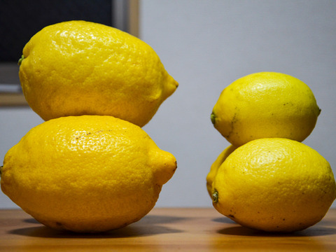 〔低農薬デカレモン〕果汁たっぷり!皮まで安心して使えます♪(5kg・ユーレカレモン)