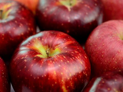 【数量限定】秋空で真紅に輝くりんご「秋映」(大玉6個)