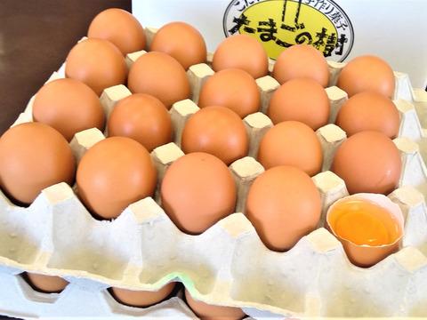 国産鶏種もみじの新鮮たまご36個(40個入り4個割れ保障)