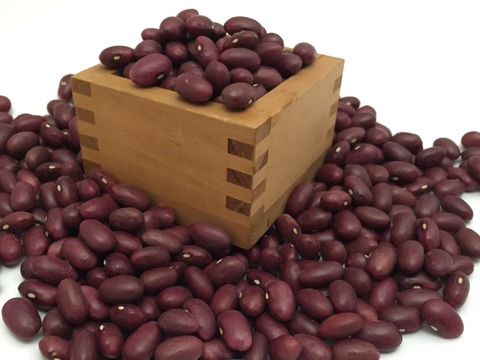 北海道の美味しいお豆!自家種 金時豆1kg