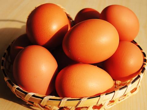 平飼い養鶏の自然卵「おぶせのたまご」(30個)