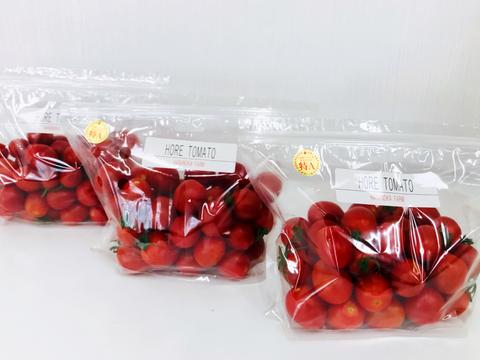 「ひんやり屋」高糖度「ほれトマト」500g*3袋セット 太陽の恵みをたっぷりもらった糖度10度以上の極上ミニトマト
