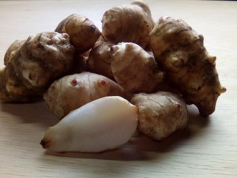自然栽培キクイモお試し1kg(土付き)