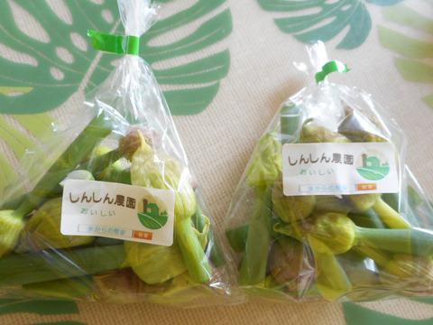 幻の食材 ねぎ坊主 葱の花の蕾 2袋 エコファーマー認定 減農薬