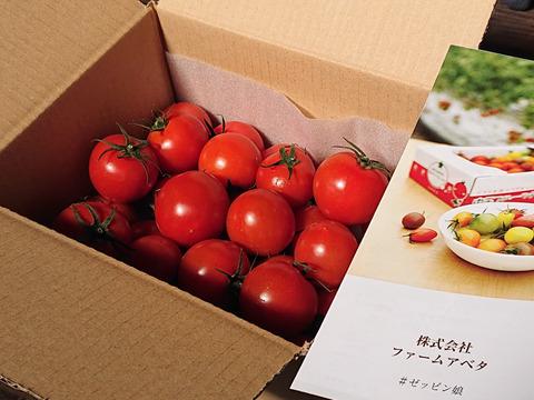 皮が薄くジューシーな中玉フルーツトマト ゼッピン娘(華おとめ) 1kg #農カード付