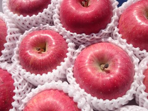 蔵出しりんご【特選】3キロ(9~12玉入り)