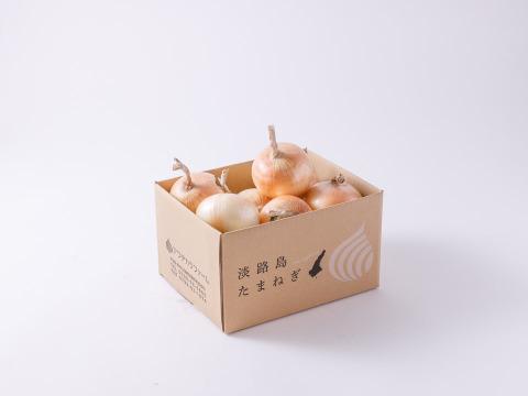 【夏限定】生でサクっと甘い 熟成サラダ玉ねぎ「熟れっ玉」3㎏(L-2Lサイズ)