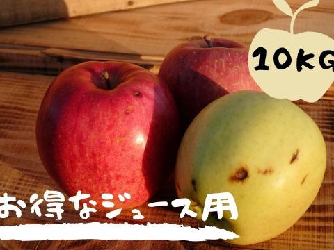 規格外のりんごだからお買い得!ジュース用・加工用りんご 10kg【青森県産】