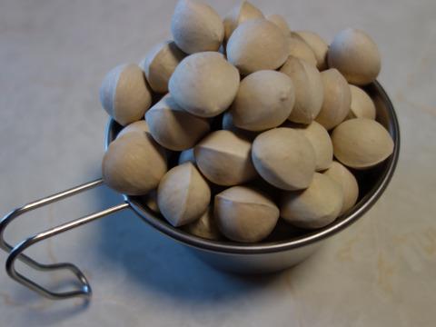 愛知県産 銀杏 600g サイズ:3L 品種:久寿
