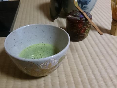 開拓から一度も農薬使ってません!有機JAS認証抹茶 上 茶道用銘「豊樹の白」