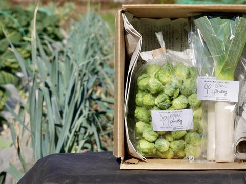 冬のヨーロッパ野菜セット