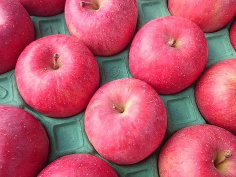蔵出しりんご3キロ(9~12玉入り)2箱セット