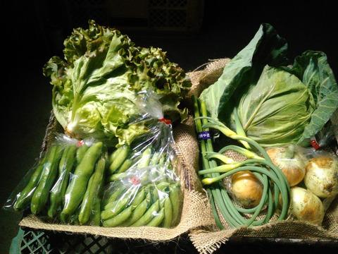 四季の無農薬野菜セット(約8種)
