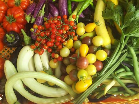 旬の野菜セット*農薬 化学肥料不使用
