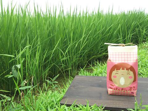 【新米】ごはん大好き!菜園家族の旅するお米「コシヒカリ」【白米】2kg