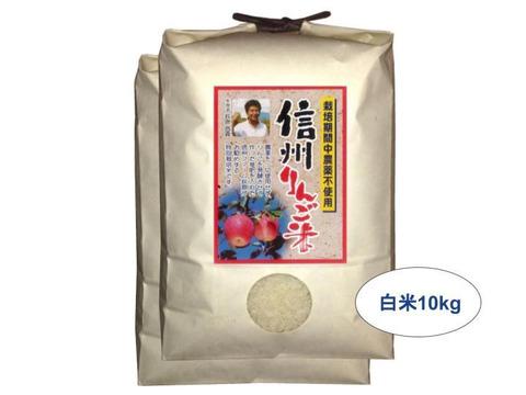【白米10kg】信州りんご米 こしひかり【受注精米】(5kg×2袋)令和2年産