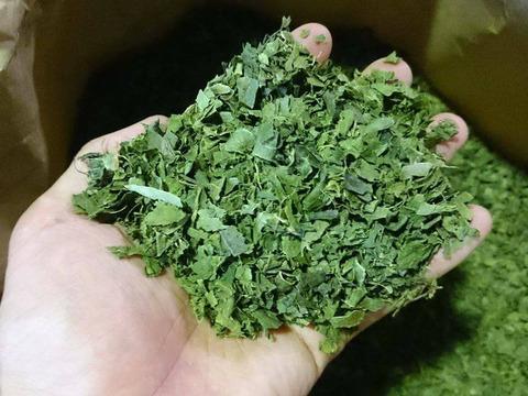 大特価 自然栽培次郎柿の葉茶 400g