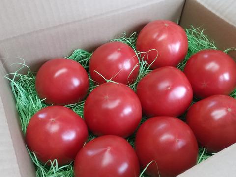 純粋・濃厚・安心!化学農薬・化学肥料不使用あま~いトマト「レトロクイーンB」2kg