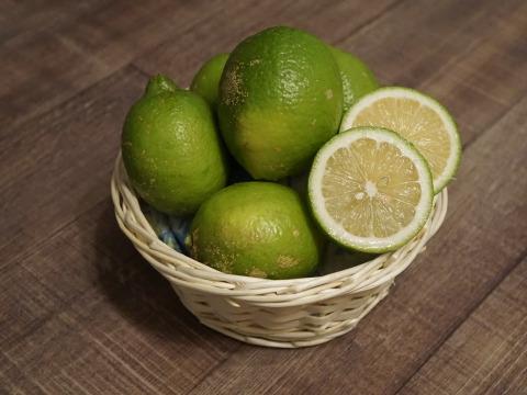 有機レモン(リスボン)3kg