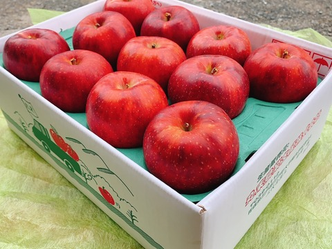 【贈答用・9月限定】完熟りんご(サンつがる )3kg (9~12玉)