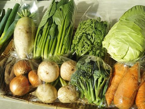 【農薬・化学肥料不使用】旬の野菜詰め合わせ9~10品【100サイズ】