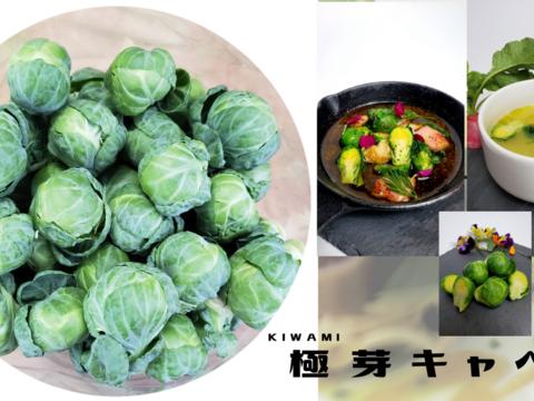 極kiwami 芽キャベツ
