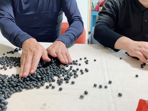 ふっくら柔らか!アクが出なくて炊くのも楽ちん 黒豆さん(1kg)R2年産【栽培期間中 肥料・農薬・たい肥不使用】