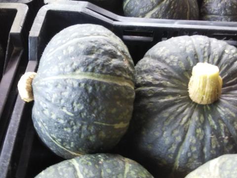 Jasmineさんリクエスト  栗えびすかぼちゃ追加  フルーツトマト、キュウリ・ミニキュウリ・ピーマンの詰合せ 世界農業遺産 ブランド野菜シリーズ