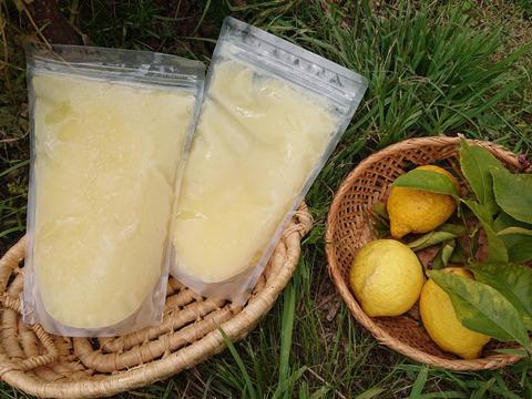 瀬戸田発!農薬・肥料不使用なので皮まで美味い!!自然農レモンの冷凍果汁(500ml X 2個)