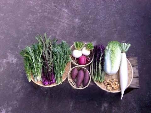 自然栽培野菜Mセット(7~9種類)