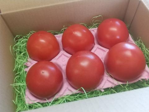 純粋・濃厚・安心!化学農薬・化学肥料不使用あま~いトマト「レトロクイーンA」1kg
