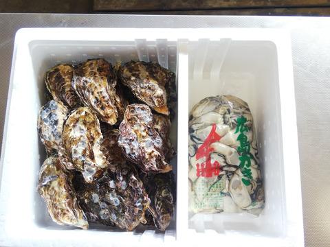 値下げ~😍【加熱用】殻付き牡蠣20ヶ+【加熱用】むき身1K袋(または500g×2袋)