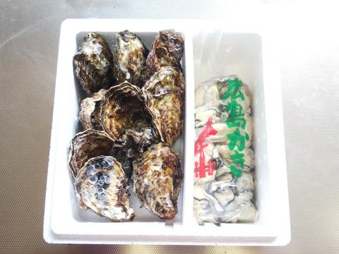 🌸春が旬🌸【加熱用】殻付き牡蠣10ヶ+【生食用】むき身500g