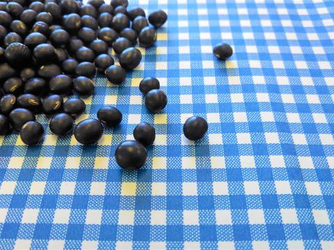 【セット】♥黒大豆1kg×3袋♥