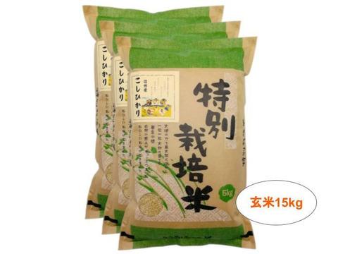 【玄米15kg】残留農薬ゼロ!情熱の結晶!つぶ感が人気の信州産こしひかり(5kg×3袋) 令和2年産