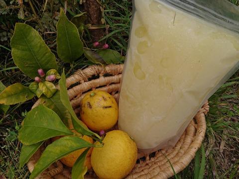瀬戸田発!農薬・肥料不使用なので皮まで美味い!!自然農レモンの冷凍果汁(1L)