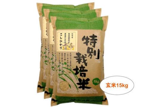 【玄米15kg】信州産 農薬不使用米 こしひかり (5kg×3袋) 令和2年産