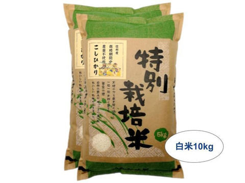 【白米10kg】信州産 農薬不使用米 こしひかり【受注精米】(5kg×2袋) 令和2年産